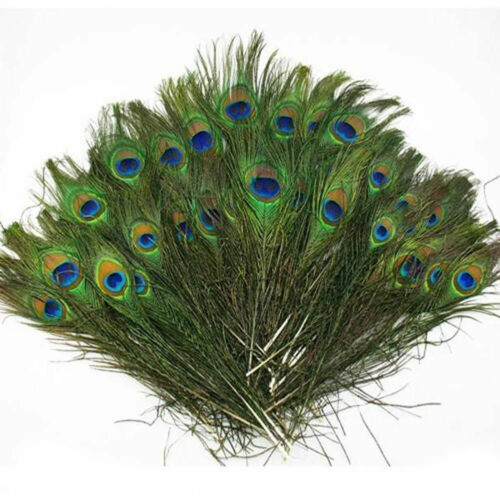 """5//10 7-12/"""" Natural Peacock Tail Nature Feather Craft Room Party Cloth Decoration"""