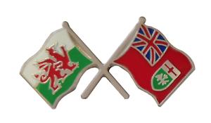 Serbia State Flag /& United Kingdom Flag Friendship Courtesy Pin Badge