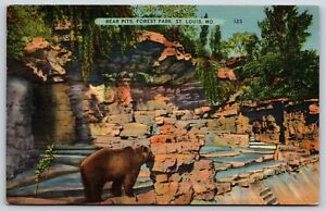 The-Bear-Pits-at-Forest-Park-Zoo-in-St-Louis-Missouri-Linen-Postcard