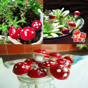 20Pcs-Mini-Red-Mushroom-Ornament-Garden-Miniature-Plant-Pots-Fairy-DIY-Dollhouse