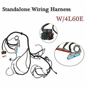 Details about Standalone Fuel Inj. Wiring Harness W/4L60E For 1999 on