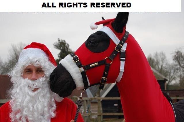 X-LARGE SANTA HORSE SLEAZY HORSE COSTUME  X-L