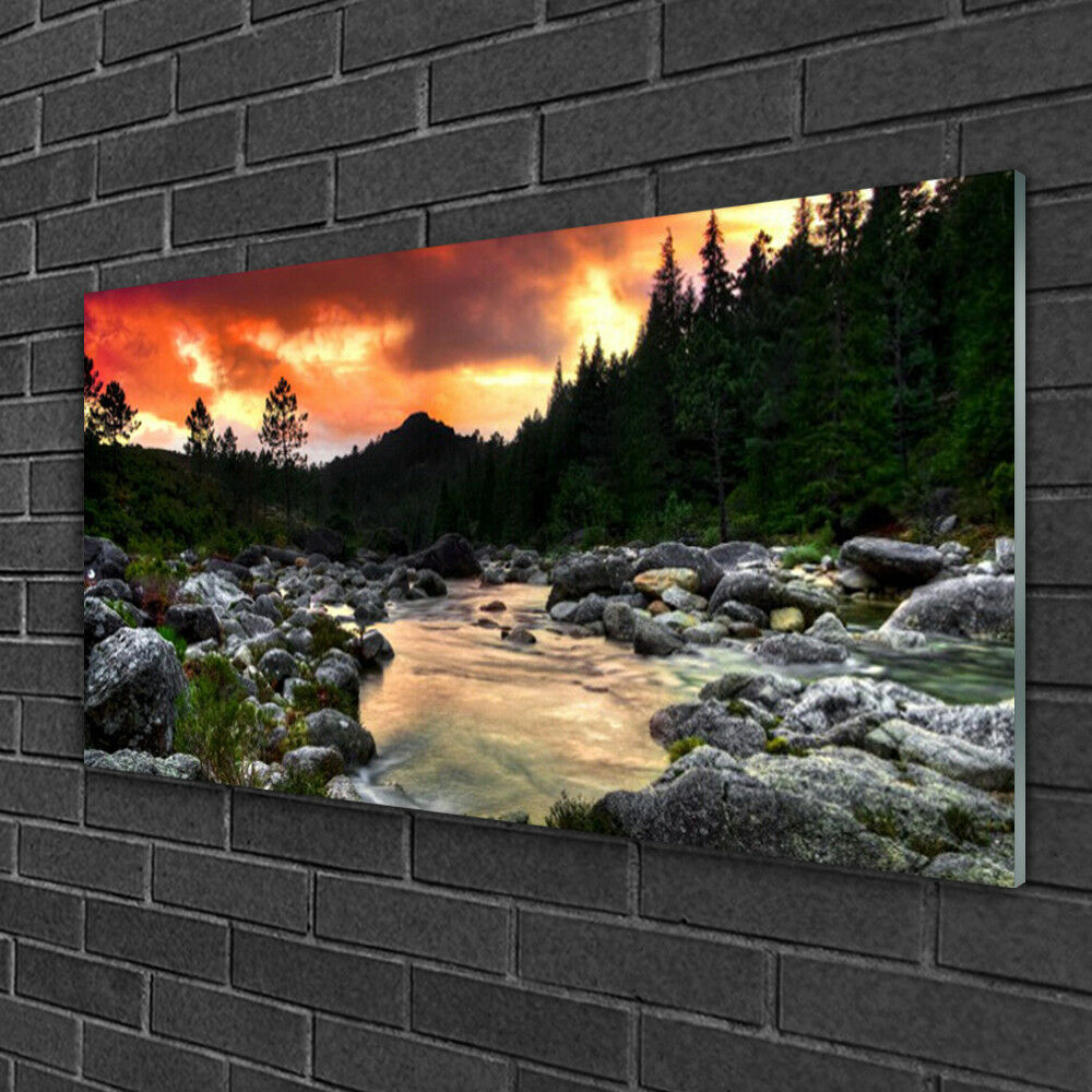 Image sur verre acrylique Tableau Impression 100x50 Nature Lac Pierres Forêt
