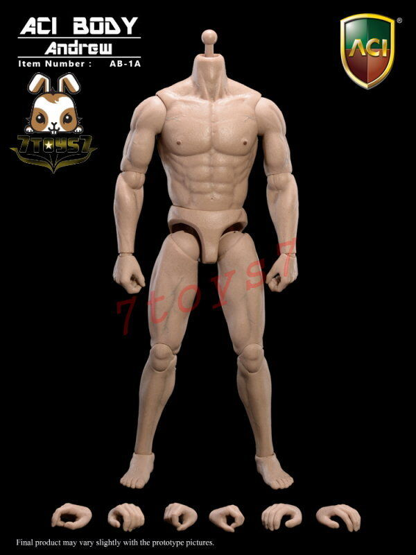 ACI Toys 1 6 AB-1A Muscular Caucasian_ Body + 6 hands Loose _Andrew Now AT026MA