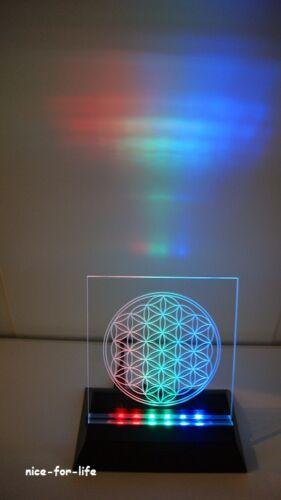 Lichtobjekt Blume des Lebens LED Farbwechsler Leuchte Licht