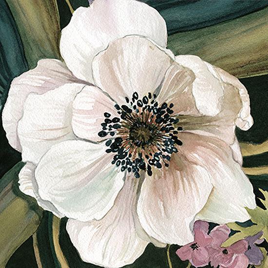Carol Robinson  Anemone STUDIO IV barella-immagine Schermo Fiori Floreale Fiori