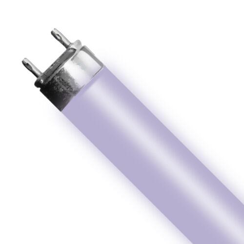 """12Pack T5 Bulb 24W Aquarium Light Bulb HO for 24/"""" 2 ft 6500K 10000K Actinic Pink"""
