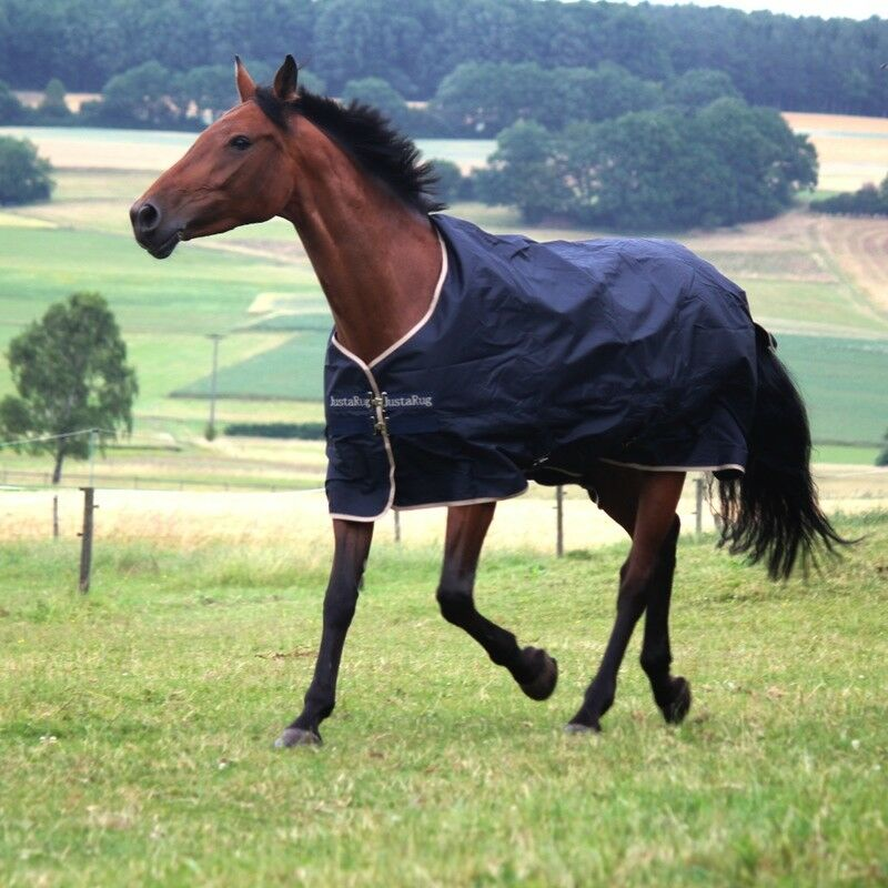 Horseven juEstrellaug turnout  Medium 200 G  compra en línea hoy