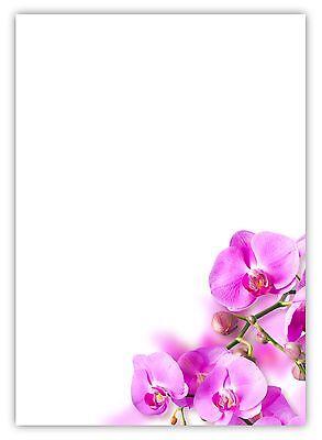 Amarena gerippt Violett 100 g//m/² PAPERADO 25x Briefpapier DIN A4 Papierb/ögen in 29,7 x 21 cm zum Basteln /& Drucken