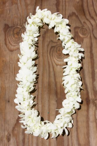 Handmade Double Orchid Lei. Fresh and Real. Perfect for Grads!