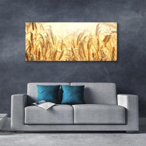 Leinwand-Bilder Wandbild Canvas Kunstdruck 125x50 Weizen Pflanzen