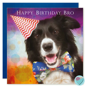 Details About Brother Birthday Card Border Collie Dog Lover HAPPY BIRTHDAY BRO By Juniperlove