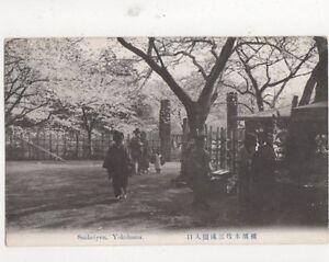 Sankeiyen-Yokohama-Japan-Vintage-Postcard-492a
