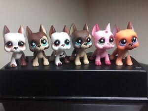 6-PC-Littlest-Pet-Shop-GREAT-DANE-Dogs-LPS-577-244-817-817-2-750-2598