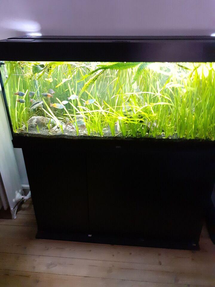 Akvarium, 240 liter, b: 120 d: 40 h: 50