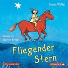 Fliegender Stern von Ursula Wölfel (2012)