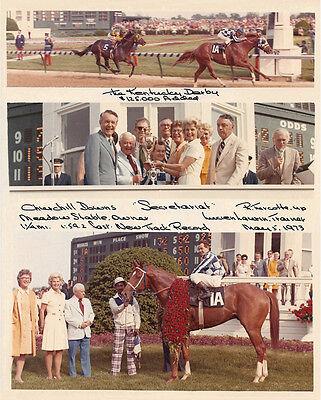 SECRETARIAT PRETTY 8X10 1973 KENTUCKY DERBY HORSE RACING COMPOSITE PHOTO!