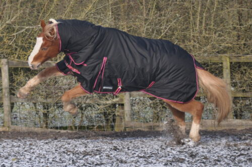"""Protuff Turnout  Rug neck combo 1200d Autumn rug 250g filling  5/'9/"""" BNWT MW"""
