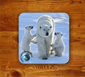 Polar-Bears-coaster-What-a-wonderful-world
