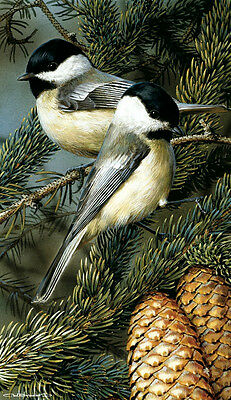 BIRD ART PRINT - Chickadees by Carl Brenders Wildlife Pine Cone Poster 24.5x12