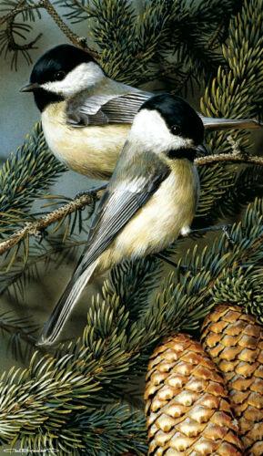 Chickadees by Carl Brenders Wildlife Pine Cone Poster 24.5x12 BIRD ART PRINT