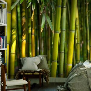 Details zu VLIES FOTOTAPETE Wald Asian Bambus grün TAPETE Wandbilder xxl  Wohnzimmer 3 Farb