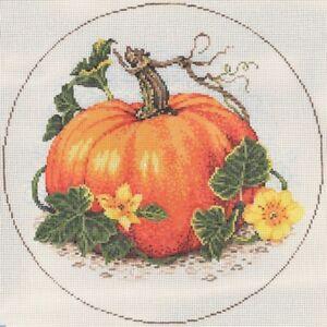 Needlepoint-Handpainted-Sandra-Gilmore-Pumpkin-SQUASH-Blossoms-9-034