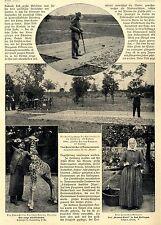 Meisterflugschütze Dr.Quittenbaum * Preisschießen in Neumannswalde 1905