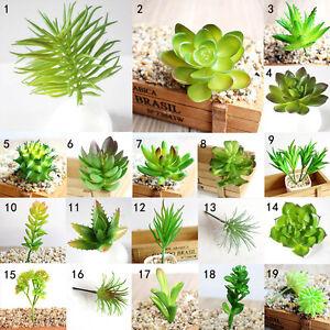 Image Is Loading Simulation Mini Plastic Miniature Succulents Plants  Garden Home