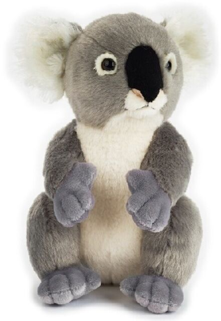 NATIONAL GEOGRAPHIC KOALA PLUSH SOFT TOY 23CM STUFFED ANIMAL - BNWT