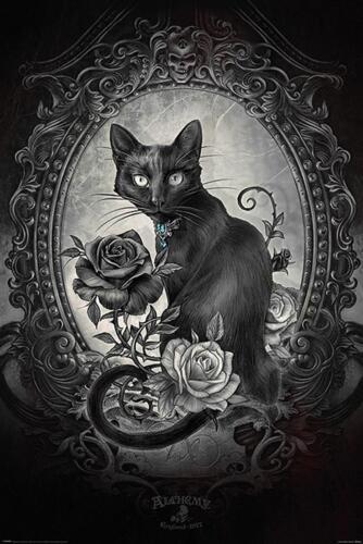 Premium Design Vanitas Gothic Katze Alchemy Poster Paracelcus 61 x 91,5 cm