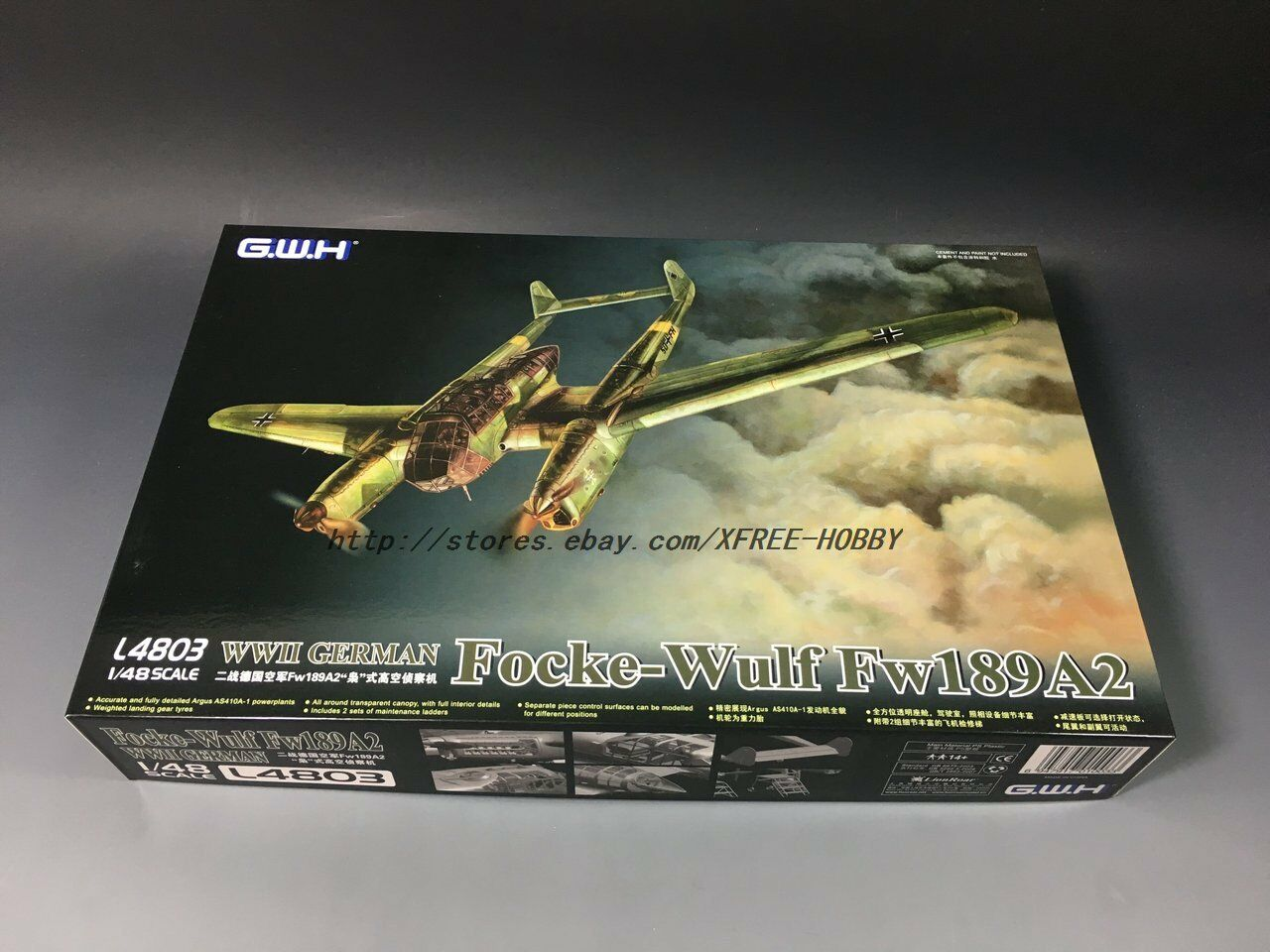 Great Wall Hobby L4803 1 48 WWII GERMAN FW189-A2