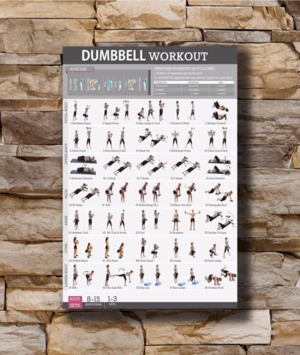 20x30 24x36In N571 Art Poster New Dumbbell Workout Body Exercise Health Chart