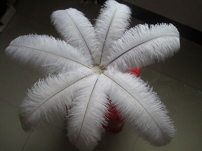 Pretty! 10-100 a natural ostrich feathers 6-22 inches / 15-55cm Free Shipping