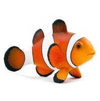 Free Shipping | Mojo Fun 387090 Clown Fish Realistic Sea Life - In Package