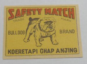 13+ Poto anjing buldog terupdate