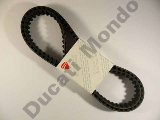 Ducati OEM cam timing belts Monster 659 696 795 796 Hypermotard 10-15 11 12 13