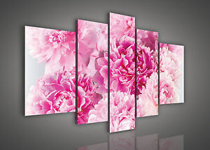 leinwandbild bild wandbild bilder wandbilder rosa pfingstrosen blume 3fx622s4a ebay. Black Bedroom Furniture Sets. Home Design Ideas