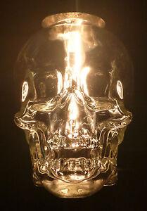 Crystal Head Vodka Skull Bottle Empty Hanging Ceiling
