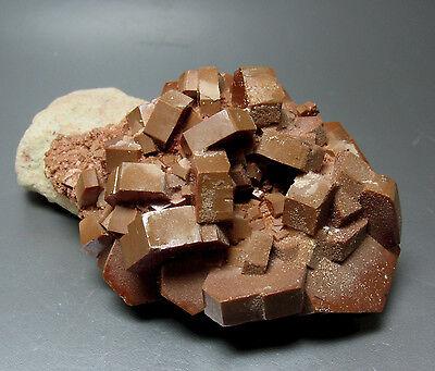 Vanadinite Crystal Group - 5.4 cm - Midelt, Morocco - Free Shipping