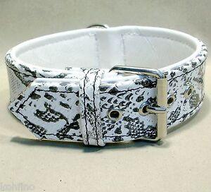 Collier de chien collier en cuir collier de bijoux modèle crocodile Croco Blanc 4cm