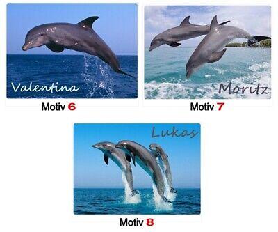 delfin essen