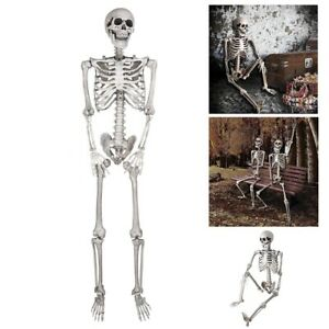 5-FT-Full-Body-Skeleton-Props-Movable-Joints-Haunted-House-Halloween-Decoration