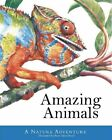 Amazing Animals: A Nature Adventure by Silver Dolphin Books (Hardback, 2015)