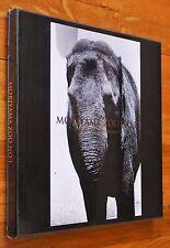 DAIDO MORIYAMA - ZOO NO. 1 - 2009 1ST EDITION BOXED SET LTD 1/1000 - BRAND NEW