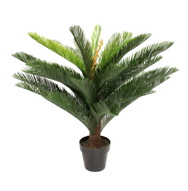 Blooming Artificial 90cm H Cycas Tropical Palm Tree Plant Realistic Faux Cacti