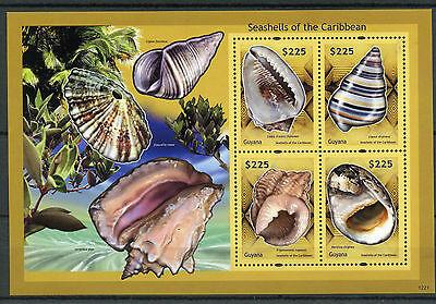 Guyana 2012 MNH Seashells of Caribbean 4v M/S Shells Marine
