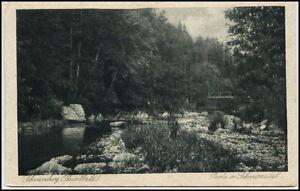 Schwarzburg-Thueringen-alte-Ansichtskarte-1920-30-Partie-im-Schwarzatal