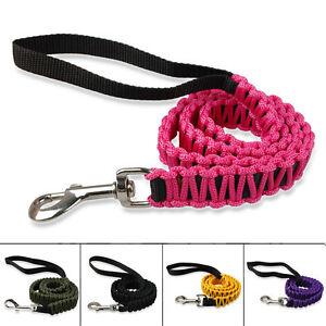 Nylon-Braided-Dog-Lead-Pet-Leash-Durable-for-Small-Medium-Dogs-Walking-2-5-100cm