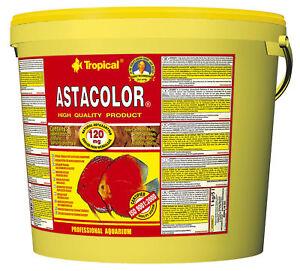 5 Litres Tropical Astacolor Farbflocken (8,80/l) Farbfördendes Aliment En